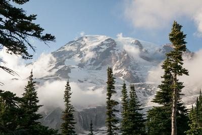 The Summit of Mount Rainier, Visible Through Low-Lying Clouds and Evergreen Trees