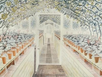The Greenhouse: Cyclamen and Tomatoes by Eric Ravilious