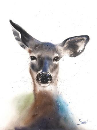 Deer Watercolor by Eric Sweet