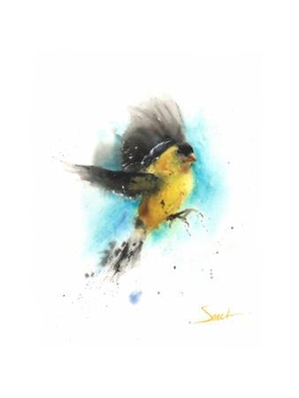 Goldfinch by Eric Sweet