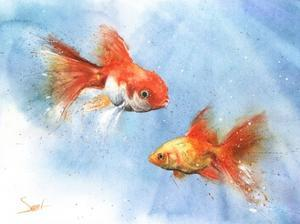 Goldfish by Eric Sweet