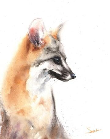 Grey Fox by Eric Sweet