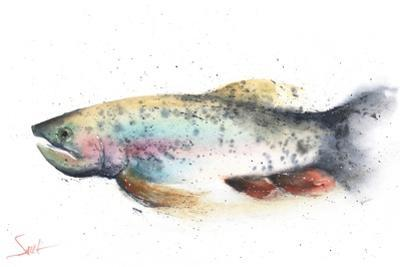 Rainbow Trout by Eric Sweet