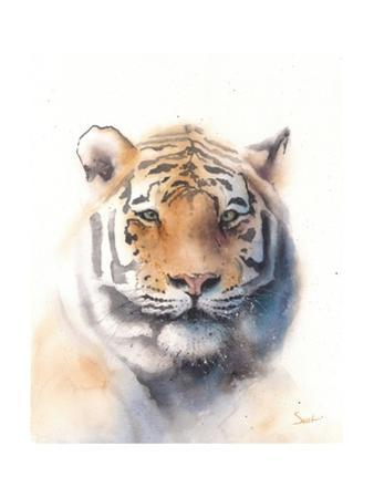 Tiger by Eric Sweet