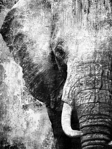 African Animals I - Grey by Eric Yang