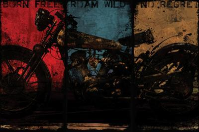 Born Free Multi by Eric Yang