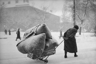 Aftermath of the Hungarian Revolution: An old woman pulls three heavy sacks through the snow.