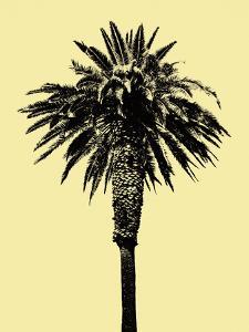 Palm Tree 1996 (Yellow) by Erik Asla