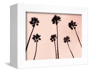 Palm Trees 1997 Copper by Erik Asla