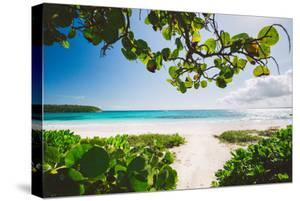 A White Sand Beach On The Island Of Eleuthera, The Bahamas by Erik Kruthoff