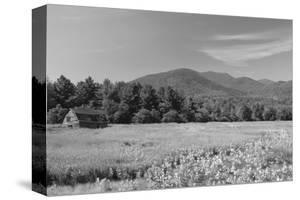 Adirondack Field by Erik Richards