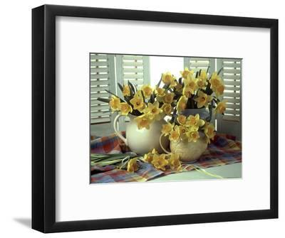 Spring Flower Arrangement of Narcissus in Jugs, Checked Cloth