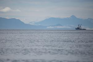 Fishing Boat Sails in Southeast Alaska's Inside Passage by Erika Skogg