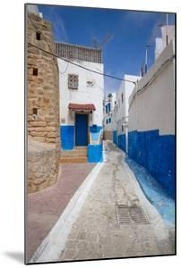 Narrow Neighborhood Streets Decorated in Blue and White by Erika Skogg