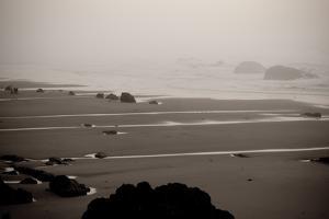 Beach at Seal Rock II by Erin Berzel