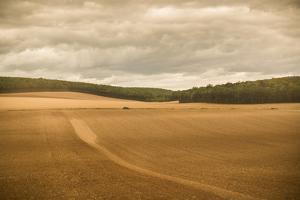 French Countryside II by Erin Berzel