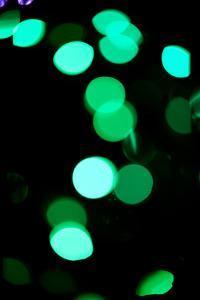 Green Bokeh by Erin Berzel