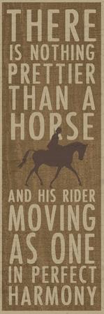 Harmony Rider by Erin Clark