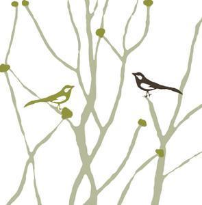 Little Bird by Erin Clark