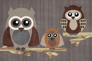 Owls by Erin Clark