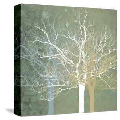 Quiet Forest by Erin Clark