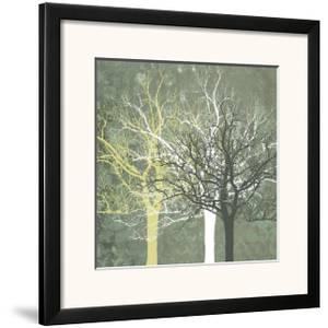 Silent Forest by Erin Clark