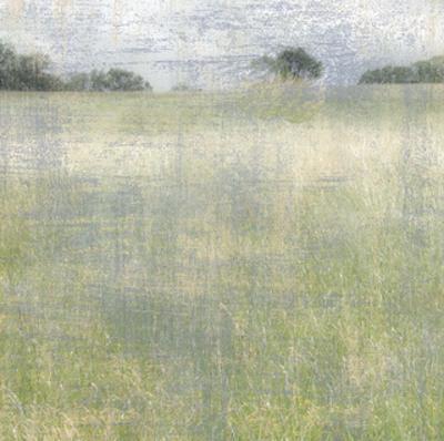 Sugarloaf Vista I by Erin Clark