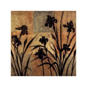 Iris Silhouette II by Erin Lange