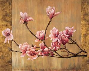 Pink Magnolias by Erin Lange