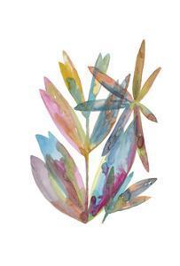 Rainbow Wish 1 by Erin Lin