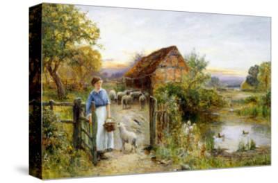 Bringing Home the Sheep