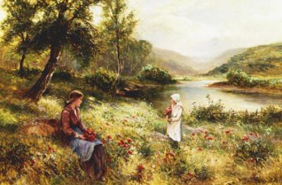 Gathering Poppies