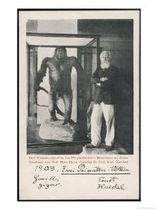 Ernst Haeckel German Scientist with a Gorilla in 1909