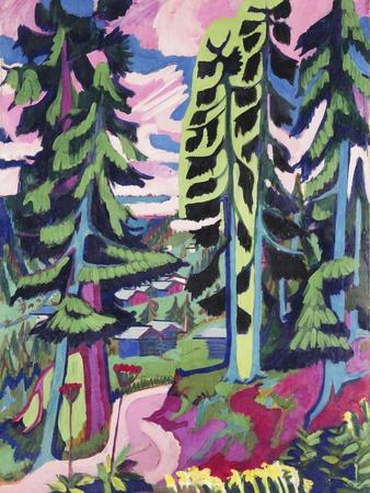 Wild Mountain (Mountain Forest; Summer Forest)