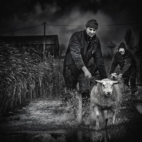 Escape from the Flood-Piet Flour-Photographic Print