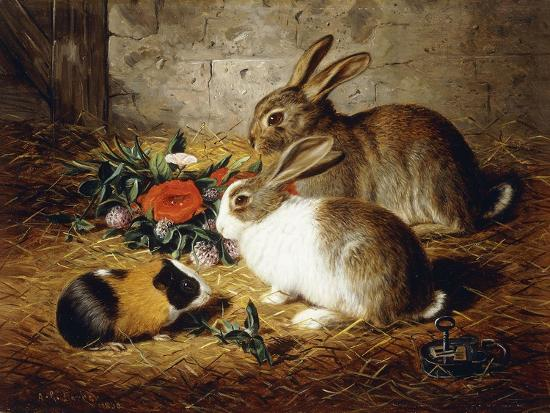 Escaped: Two Rabbits and Guinea Pig-Alfred R. Barber-Giclee Print