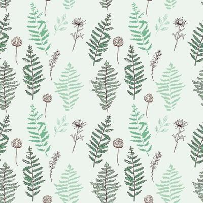 Fern Seamless Pattern. Botanical Illustration with Fern Leaves on White Background. Design Elements