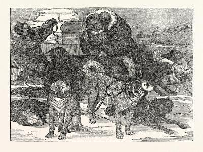 Eskimaux Harnessing their Dogs to a Sledge--Giclee Print