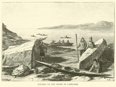 https://imgc.artprintimages.com/img/print/eskimos-on-the-shore-of-labrador_u-l-pph0zi0.jpg?p=0