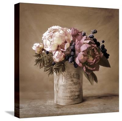 Estate Peonies-Cristin Atria-Stretched Canvas Print