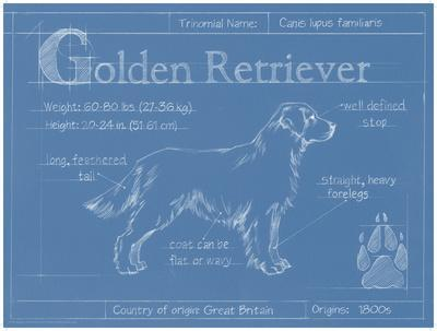 Blueprint Boxer by Eathen Harper Dog Print 19x13