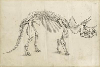 Dinosaur Study II by Ethan Harper