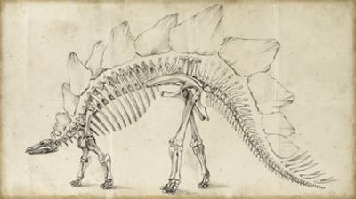 Dinosaur Study III