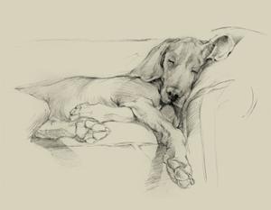 Dog Days I by Ethan Harper