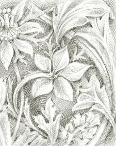 Floral Pattern Sketch III by Ethan Harper