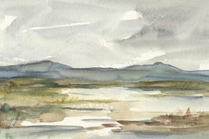 Overcast Wetland I by Ethan Harper