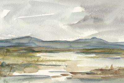 Overcast Wetland I