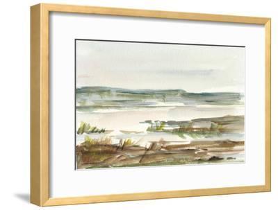 Overcast Wetland II