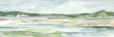 Panoramic Seascape II by Ethan Harper