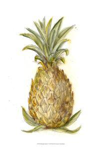 Pineapple Sketch I by Ethan Harper